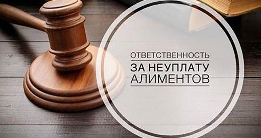 Административная ответственность за неуплату алиментов становится понятнее // Пленум ВС разъясняет норму КоАП